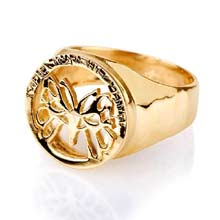 Amulets and Charms - Butterfly Effect ring gold - Click here for more info