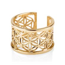 Amulets and Charms - Pattern of life ring big gold - Click here for more info